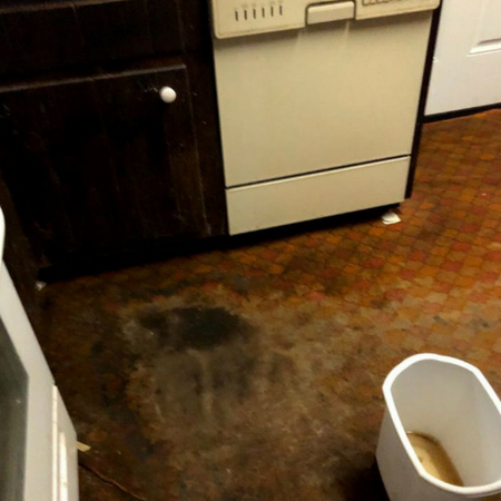 Flood Water Damage Cleanup NY Image 2